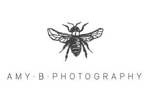 Amy B Photography logo
